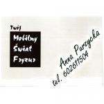 logo_twomobilnyswiatfryzur_01